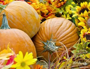 Pumpkins – They're Not Just for Halloween